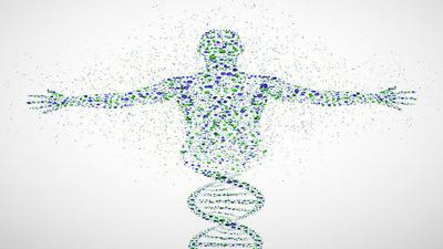 修改你的基因——「转基因人」你能接受吗?