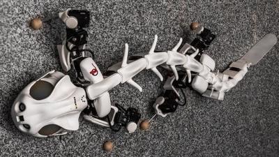 水陆双栖机器人 Pleurobot :古生物研究的新起点