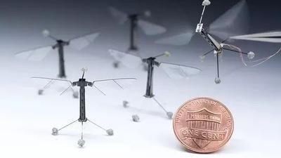 Robo-Bee 蜜蜂机器人:既能天上飞,还能水里游