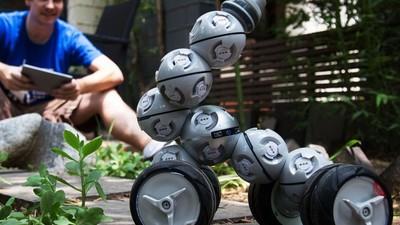 他们将模块化机器人带出了实验室,产品市场化的过程如同坐过山车