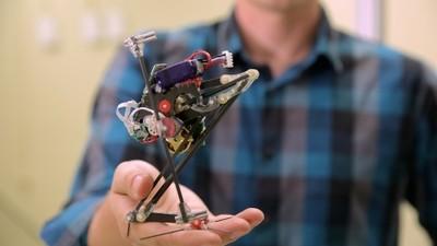 迄今为止最会跳的机器人 Salto,敏捷性可达每秒 1.7 米