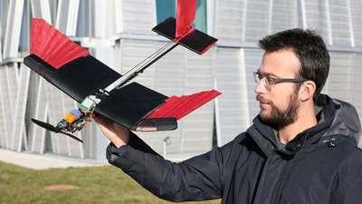 给无人机装上羽毛,就可像鸟一样自由伸展「翅膀」了