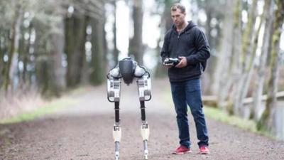 离商业化不远的双足机器人 Cassie,或许能成为日后的快递小哥