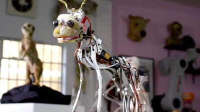 BBC 建造机器人卧底大军,还好动物不懂人类的「恐怖谷」