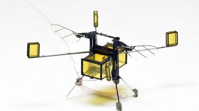 那个只会「跳水」的 RoboBee 微型机器人,如今终于学会了「鲤鱼跃龙门」