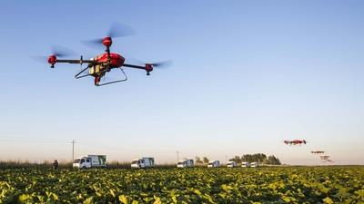 无人机、农田医生和未来农场,在这里我们听到了中国农业的未来 | 梧桐 CEO 早茶会