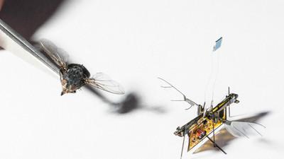 为了让微型无人机 RoboFly 畅飞无阻,他们用上了激光充电技术