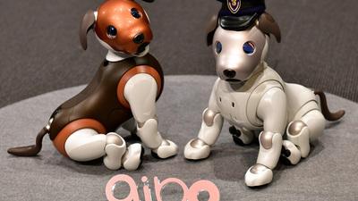 索尼 aibo 机器狗新功能上线:可记住十张人脸,还能为你看家护院