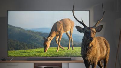 电视芯片出货量超 20 亿套、全球市占率第一!联发科解读电视发展趋势