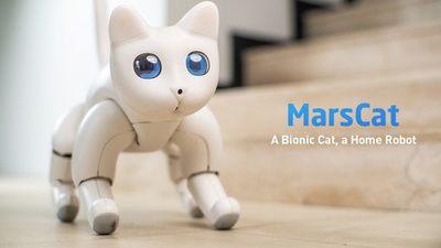 撸猫不想铲屎、索尼 aibo 又太贵?不如试试这只正在众筹的机器猫