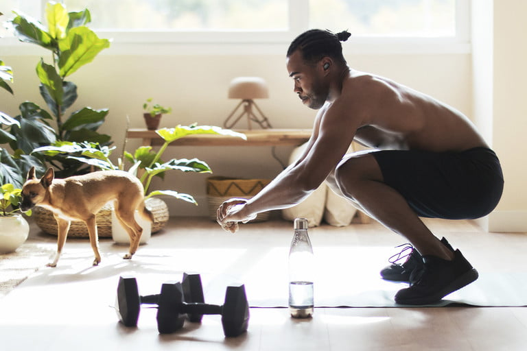 Uploads%2farticles%2f15207%2fblack dog owner squatting at home 768x512