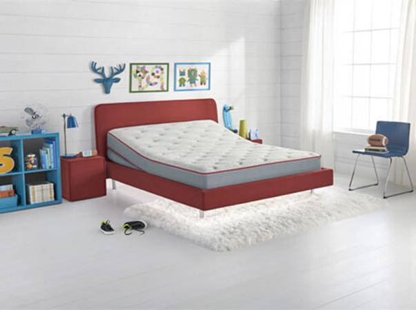 SleepIQ Kids Bed   智能儿童床