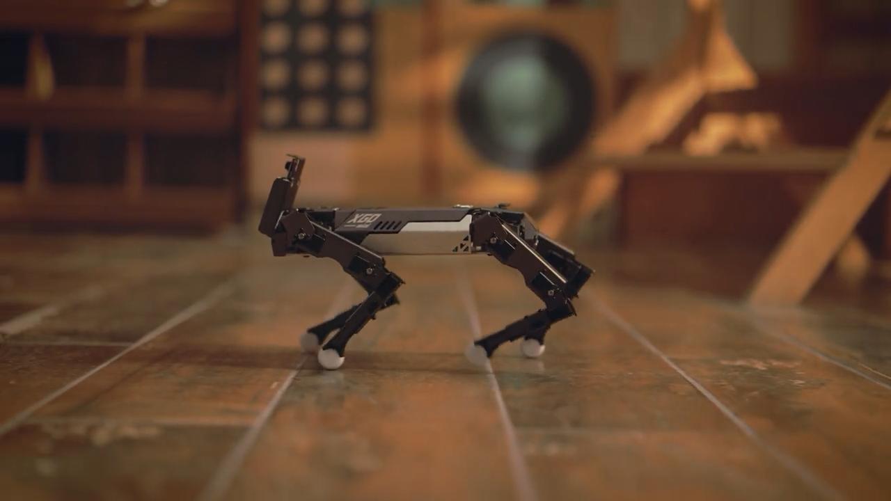 XGO-Mini,_An_Advanced_Quadruped_Robot_With_AI_Modules_by_XGO-Mini_%E2%80%94_Kickstarter-0002