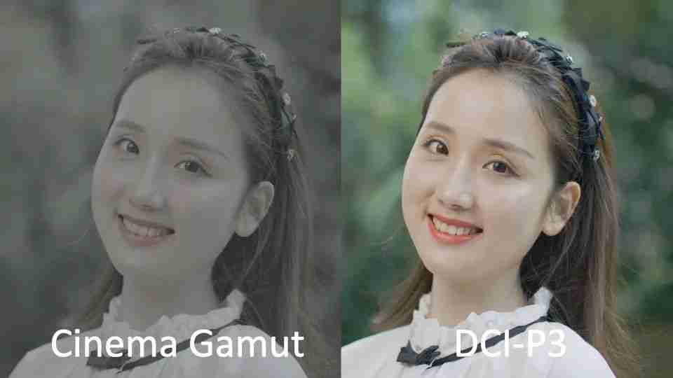 cinema gamut vs DCI-P3